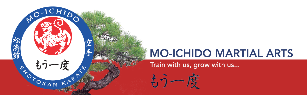 MO-ICHIDO MARTIAL ARTS